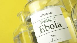 EMA-launches-rolling-review-process-for-Ebola-vaccine-makers_strict_xxl